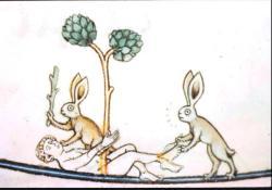 bunnykill2