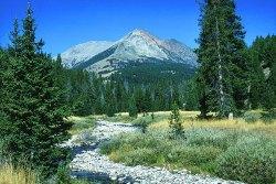 Electric Peak - Yellowstone National Park