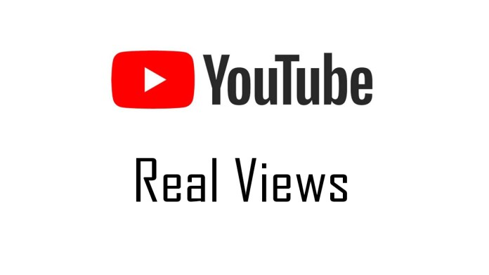 Real YouTube Views
