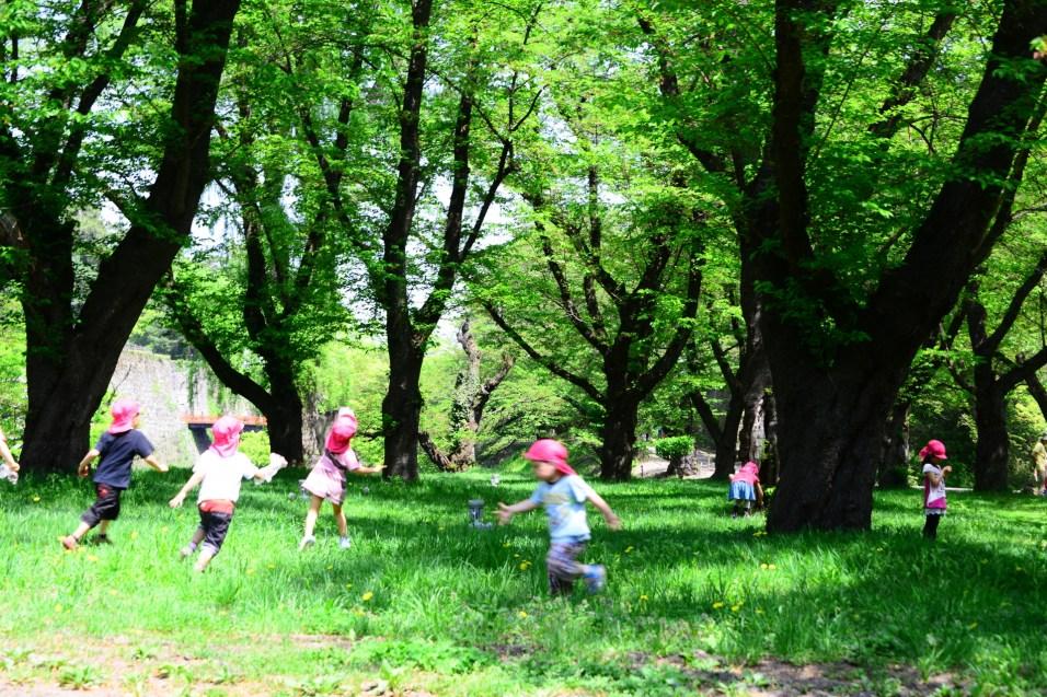 新緑のなかで遊ぶ子供達