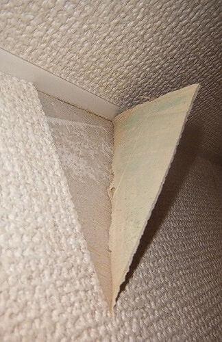 壁紙のはがれが広がってる!