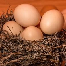 Как да сварим яйца за Великден
