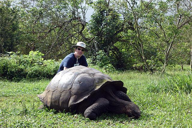 Emil_USA_Galapagos_skoldpadda640