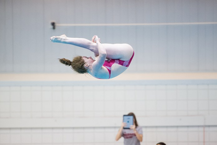 Schultz takes silver in synchronized diving at Pan Am Games