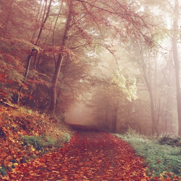 Natalie Spanner offers 6 practical magic tips to help you get through overwhelming times in your life.
