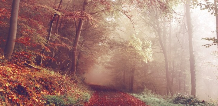How to Create Real Life Practical Magic