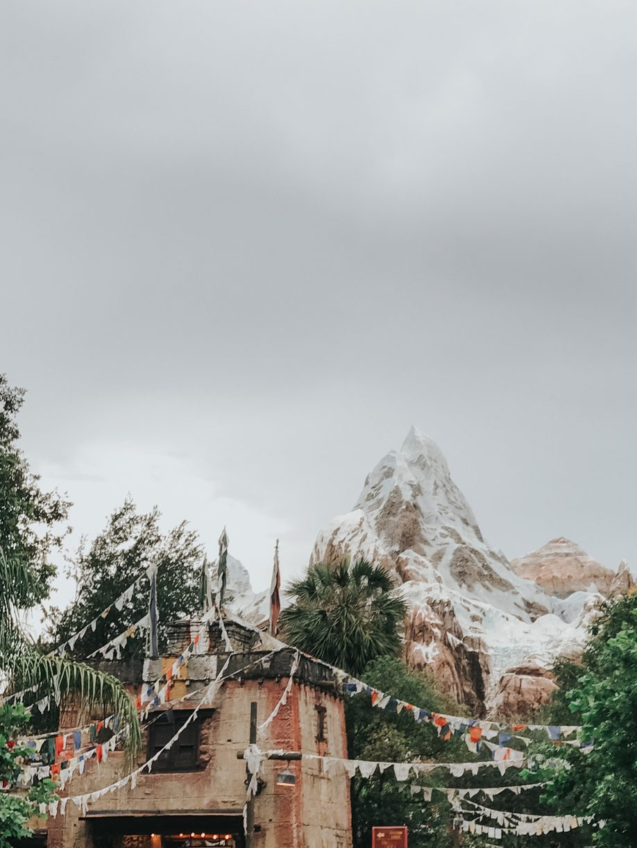 The Forbidden Mountain of Expedition Everest at Disney's Animal Kingdom - such a fun ride!