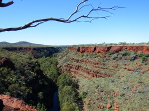 Dales Gorge from the top