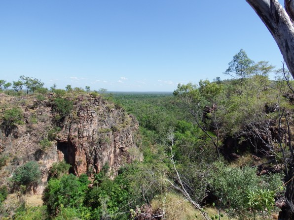 View looking away from Tolmer Falls