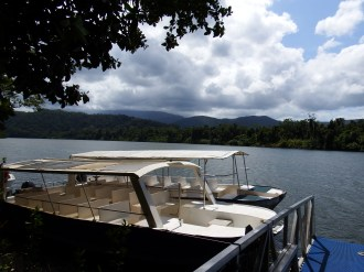 Cruising on the Daintree River
