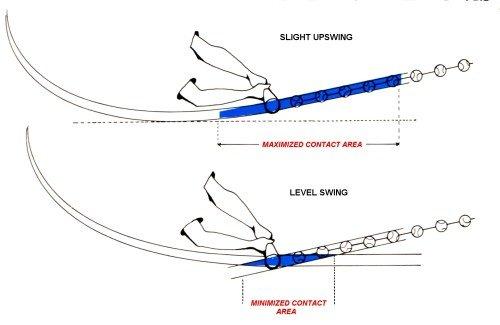 Baseball Swing Path