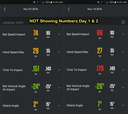 NOT Showing Numbers Day 1 & 2 (100 swings total)