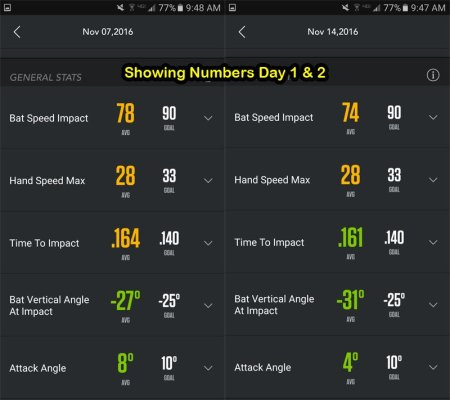 Showing Numbers Day 1 & 2
