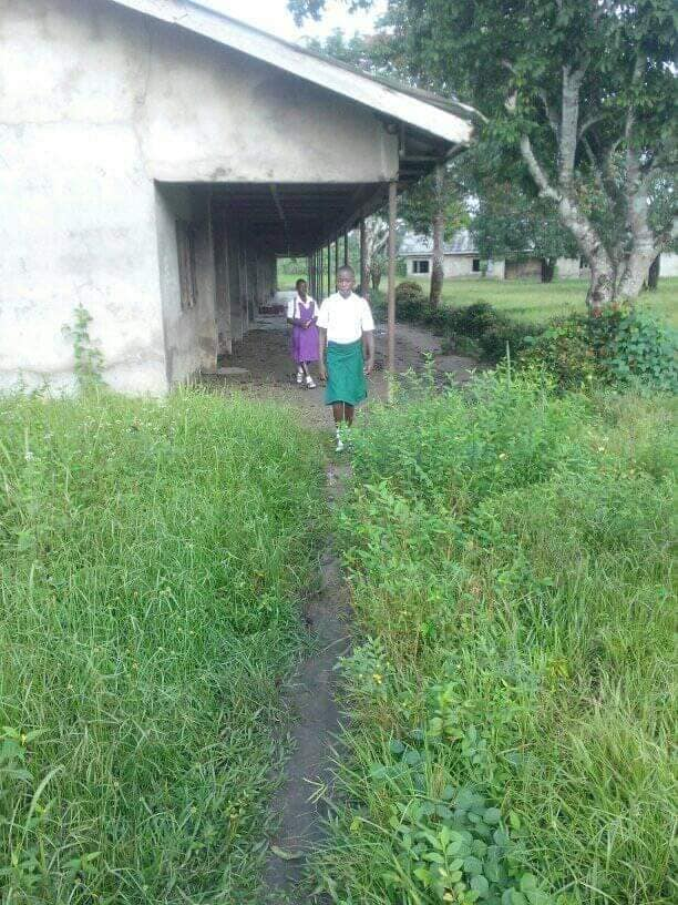 Man appeals to Wike to help renovate onelga community primary school