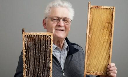 Heinrich Liepold – Der Bienenkönig