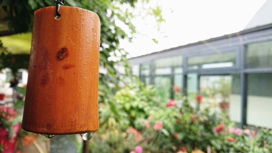 terrasse pluie rvo