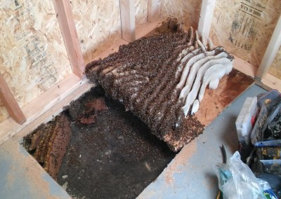 Removal and repair in shed floor