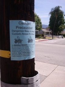 A warning sign we posted before a bee removal involving very aggressive bees.