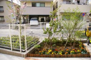 入口近くの花壇には綺麗な花たちが。左手に見える横浜市港北区の木・ハナミズキが淡いピンク色の花を咲かせていました