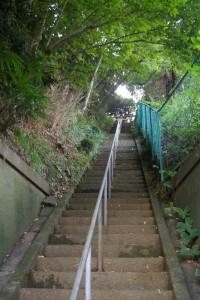 鈴木さんのお子さんが大好きな「綱島神明社」への長い階段。不思議な綱島の歴史ワールドへ誘ってくれるかのよう