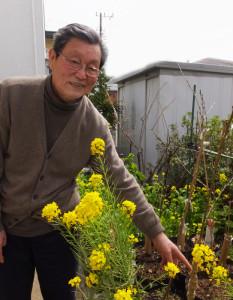樹木医の池本三郎さんは日吉生まれ・育ち。3月27日(月)に植樹する「シドモア桜」を港北区役所の職員と一緒に接ぎ木し、準備しているという