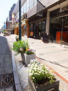 真島さんら「グループ花いっぱいTsunashima(綱島)」が美化に努める綱島西口商店街での活動は、多く通りかかる人にも好評を博している