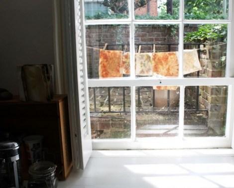 Capture-window