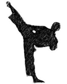 karate rule