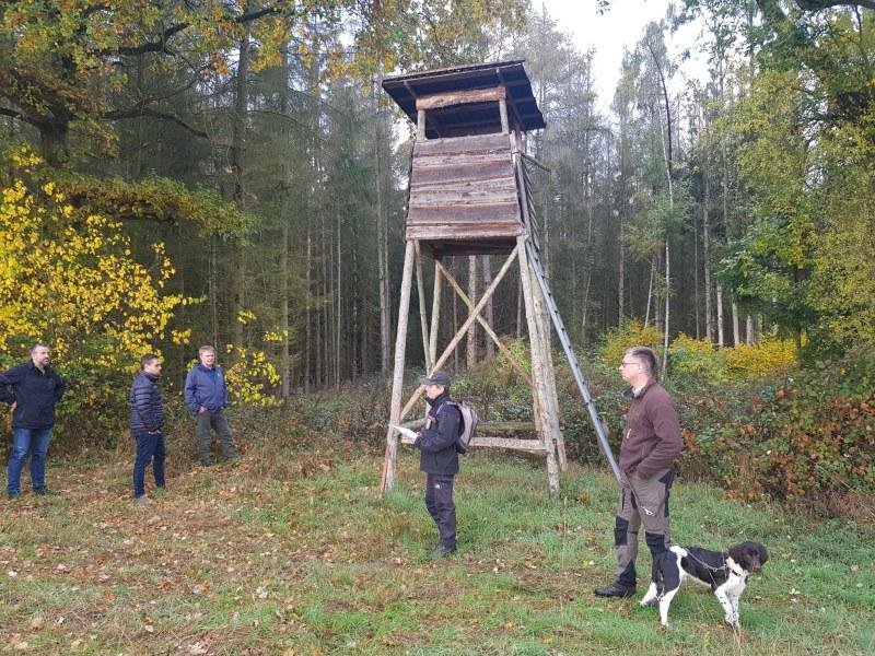 Waldbegang Elz