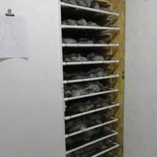 03c_Drying