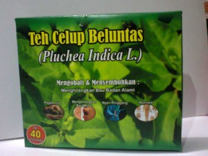 beluntasceup