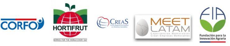 Logos Hortifrut Chile