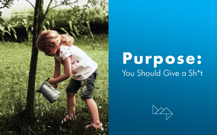 Purpose: You Should Give a Sh*t