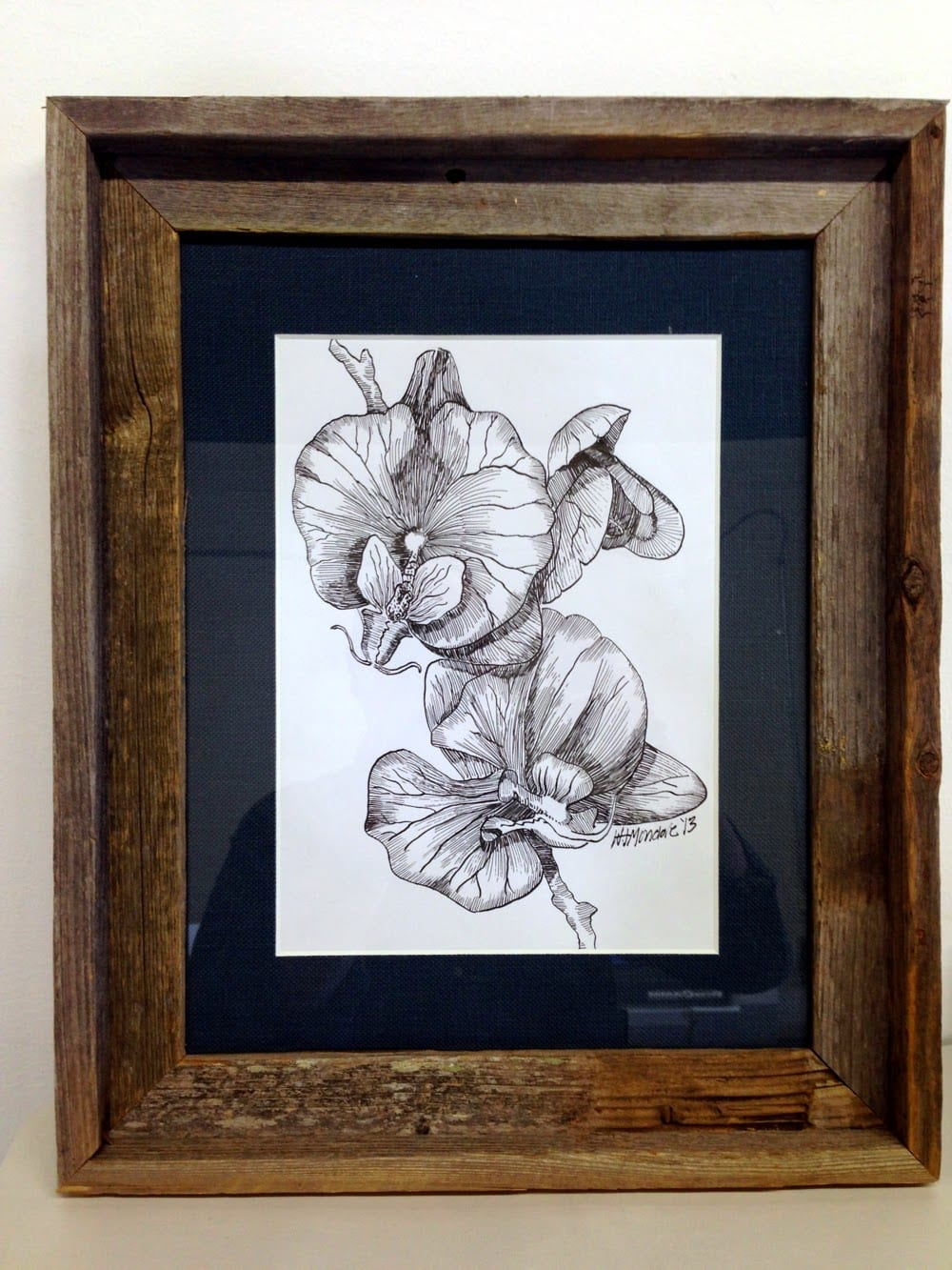 orchids-in-frame