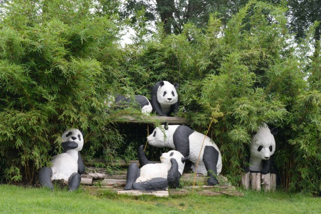 Three pandas walk in a bar, then another three pandas walk in the bar but the bar is just a bamboo grove and the pandas are plastic and can't walk.