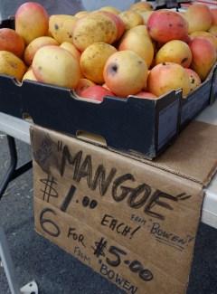 Mangoe anyone?