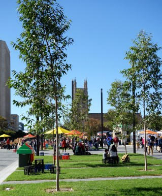 A perfect day in Adelaide