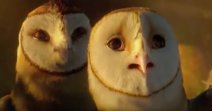 Soren and his evil brother Kludd, barn owls in the Guardians of Ga'hoole movie.