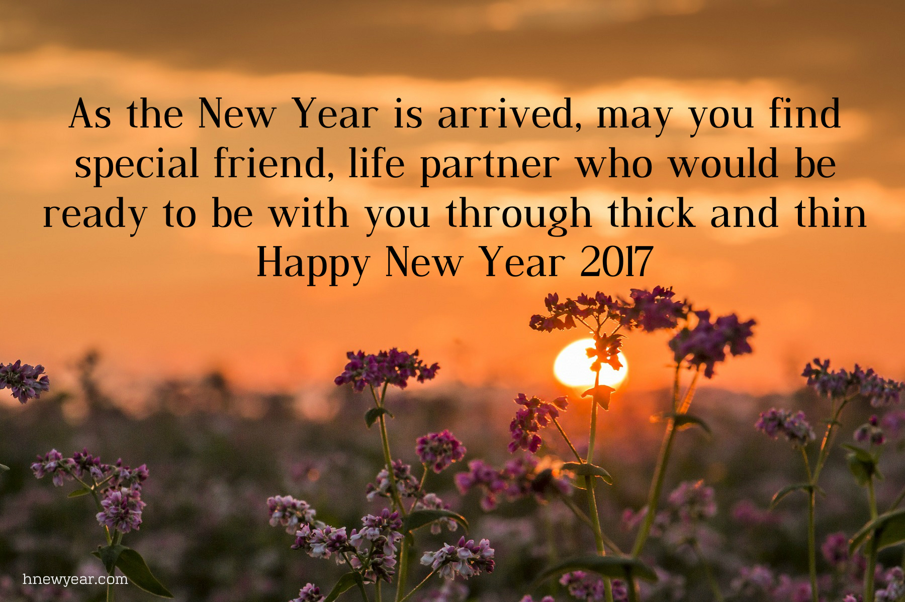 50 Heart Touching New Year Wishes For Someone Special