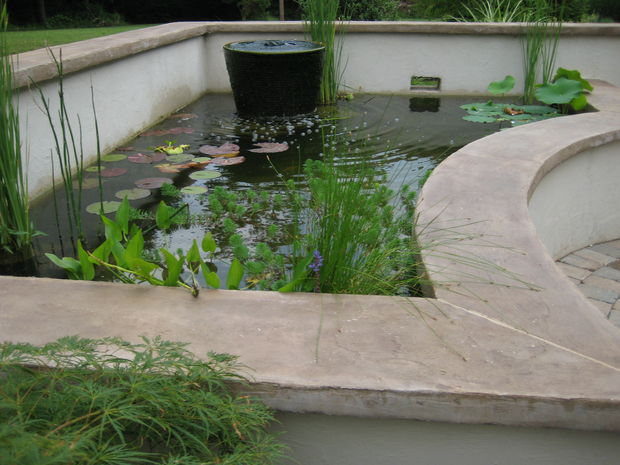 Above Ground Koi Pond Design Ideas