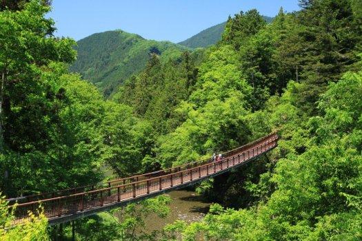 秋川渓谷 自然と石舟橋