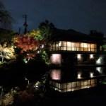 目白庭園 秋のイルミネーション!【東京池袋】