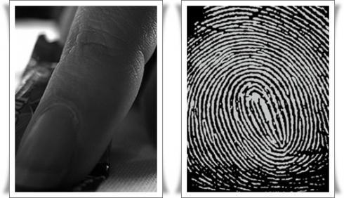 รูปก้นห้อยในนิ้วมือบอกดวงชะตาชีวิตได้