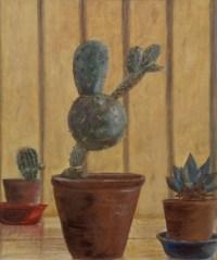 Cactus_1964