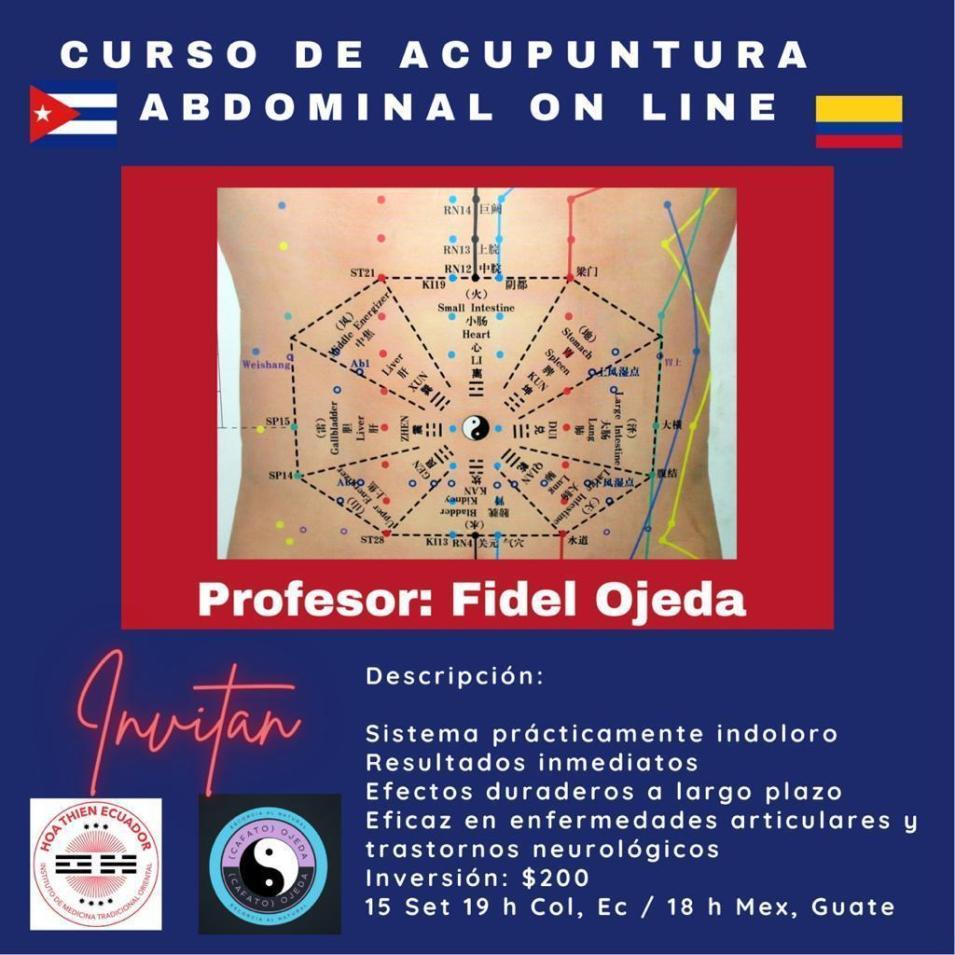 Curso de acupuntura abdominal
