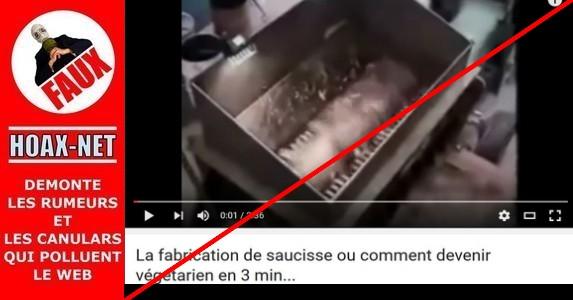 NON, les saucisses «hot-dog» ne se font pas avec des porcs entiers et non vidés.