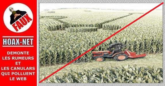 Non, les crops circles ne sont pas créés par les extra-terrestres !