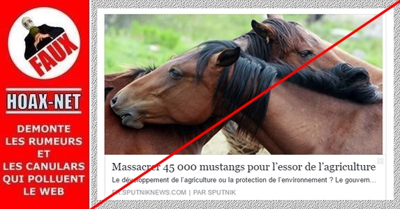 NON, il n'a jamais été question d'abattre ces chevaux.