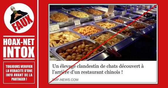 Non, un élevage clandestin de chats n'a pas été découvert à l'arrière d'un restaurant chinois !