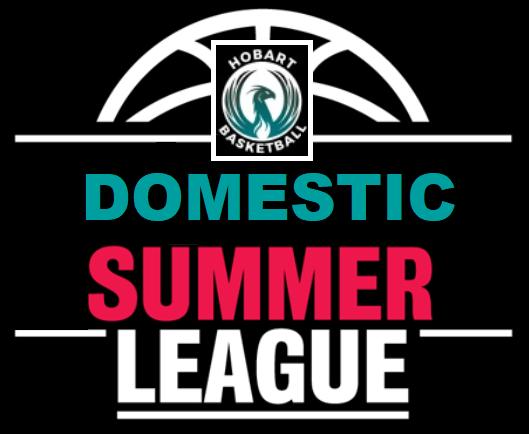 HPBA Summer Domestic League